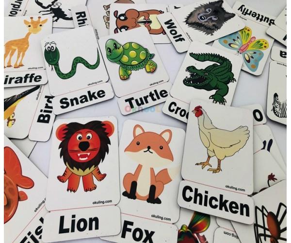 İngilizce Hayvanlar Animals Mıknatıslı Kelime Kartları