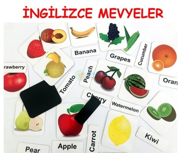 İngilizce Meyveler Sebzeler - Fruits Veggies Magnetleri