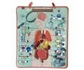 Vücudumuz İç Organlar Panosu - Tox